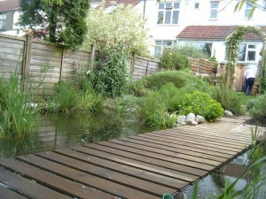 Water Garden, Westbury-on-Trym
