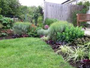 Planting, Knowle