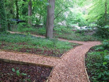 Pathways and Native Hedge – Willsbridge Mill Fairy Woodland