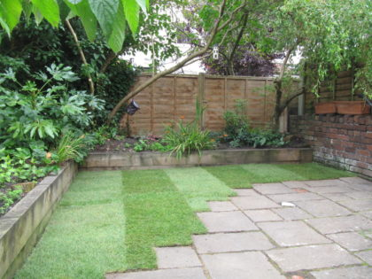 Compact Garden Turf, Whitehall